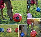 Hay Play Horse Hay Forage Feeder - FREE P&P