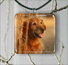 DOG GOLDEN RETRIEVER #3 PENDANT NECKLACE 3 SIZES CHOICE -hjy6Z