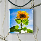 FLOWERS SUNFLOWER BLUE SKY PENDANT NECKLACE 3 SIZES CHOICE -hkd6Z