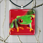 TROPICAL RED EYES FROG PENDANT NECKLACE 3 SIZES CHOICE -hfb6X