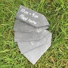 Natural Slate Mini Garden Plant Bush Markers Label Tag Pointed Stakes Herb Price