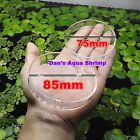 Glass Shrimp Feeding Dish Crystal Red Cherry Shrimp Fish Snail Aquarium Tank