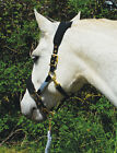 Rhinegold Anatomical Headcollar & Leadrope Set| Anatomical Head Collar
