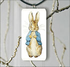PETER THE RABBIT #4 RECTANGULAR GLASS PENDANT 2 SIZES -hng6Z