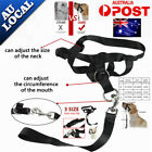 Softer Dog Head Halter Halti Training Collar Stops Pulling Gentle Leader Strap