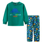 Pyjamas Boys Winter Long Cotton Top Flannel pants Pjs (Sz 3-7) Set Green Dinosau
