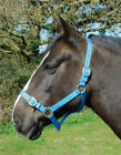 NEW Rhinegold Nylon Horse Pony Headcollar & Lead Rope MATCHY COLOURS SET ITEMS