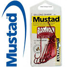 MUSTAD Bloodworm Chemically Sharpened Fishing Hooks - 1 Pack - Choose your size