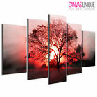 PC426 Sunrise Over Meadow Tree  Scenic Multi Frame Canvas Wall Art Print