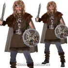 CL160 Mighty Viking Nordic Warrior Mens Fancy Dress Halloween Adult Costume