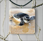 BABY SEA TURTLE READY FOR FREE SEA LIFE PENDANTS NECKLACE M - L - XL -fpa3X