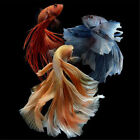 Home Decor Gift DIY 5D Cross Stitch Colorful Fish Diamond Painting New