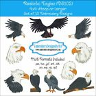 Realistic Eagle Bird Machine Embroidery Design Set of 10 CD or USB 4x4 Hoop