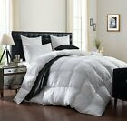 Chezmoi Collection Super Soft Goose Down Alternative Comforter - Classic Colors image