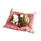 Plush Stuffed Toy Cute Sleeping Cat Press Simulation Sound Animal Kids Doll Gift