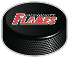"Calgary Flames Slogan NHL Logo Hockey Puck Car Bumper Sticker  - 9'',12"" or 14'' $11.99 USD on eBay"