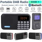 Portable DAB/DAB+ FM Radio Digital Bluetooth Receiver Stereo MP3 Player Speaker