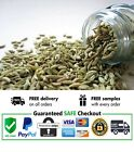 Fennel Seeds | Ceylon Spices | 100% Pure Organic and Fresh