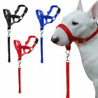 Gentle Lead Dogs Head Collar Stops Dog Pulling Training Nose Reigns Muzzle Loop