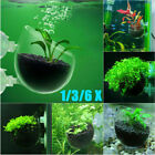 Clear Glass Plant Feeding Cup Aquatic Grass Pot Holder Aquarium Fish Tank Decor