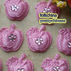 Pink Overlay Fruit Appliques Padded Craft Sewing Scrapbooking Trimming APQN