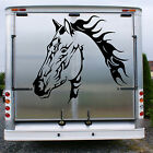 HORSE Stable Trailer Horsebox Graphic Decal Sticker Transfer