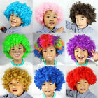 Curly Afro Wig Hair Clown Fancy Dress Party Costume Cosplay Boy Children Girl