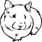 HAMSTER Sticker Car Hutch Cage Cute Graphic Decal Pet Transfer