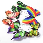 New 10pcs 3D Magnetic Crafts Butterfly Fridge Magnets Room Car Wall Decorations