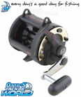 Shimano TLD Lever Drag Overhead Fishing Reel BRAND NEW at Otto's Tackle World