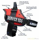 SERVICE DOG VEST & Harness w / Reflective Velcro Patches IN TRAINING,  THERAPY DOG