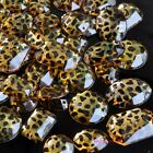 10/100 Gold Leopard Flatback Acrylic Stone Button Oval Round Square DIY Material