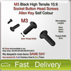 M3 Black High Tensile 10.9 Socket Button Head Screws Allen Key Bolts Self Colour