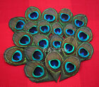 Wholesale! 10/20/50/100/200pcs 8-12 cm feathers peacock eye decoration