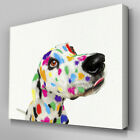A002 Rainbow Spots Pouting Dalmation Canvas Art Ready to Hang Picture Print