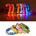 Leopard LED Light Up Pet Cat Dog Puppy Neck Collar Flashing Night Safe Luminous