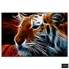 Animals Tiger Abstract wild BOX FRAMED CANVAS ART Picture HDR 280gsm