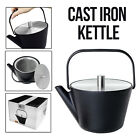 Tetsubin Heavy Cast Iron Teapot Kettle Warmer Black Stainless Steel Tea Coffee