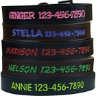 Premium Personalized Dog Collar - Pick Colors - Custom Engraved Name ID