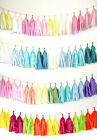 Tissue Tassels Paper Garland Bunting Wedding Party Xmas Decoration