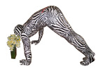 Animal Morphsuit Leopard Sloth Zebra Fancy Dress Costume Halloween Costume