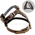 american bully harness - Quality Black Brown Leather Dog Harness Bully Husky Pitbull Mastiff Boxer