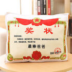 2 In 1 Soft Pillow Air Conditioning Blanket Cotton Back Cushion Blankets