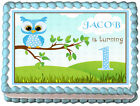 BLUE OWL 1st Year Birthday Party Image Edible Cake topper decoration