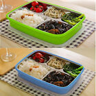 5 Layers Children Thermos Bento Lunch Box Food Fruit Picnic Storage Container DE