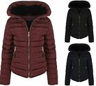 Womens Quilted Padded Navy Black Wine With Zip Hood Fall Winter Jacket Coat