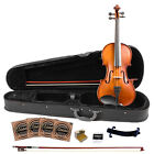 Rise by Sawtooth Beginner's Violin with Flame Maple Back Starter Pack for sale