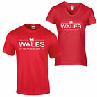 Six Nations 2017 T Shirt Rugby England Wales Scotland Ireland Italy France 1