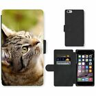 Phone Card Slot PU Leather Wallet Case For Apple iPhone Home cat looks up playin