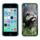 Hard Phone Case Cover Skin For Apple iPhone Racoon shows tongue